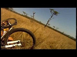 Bike vs. antelope