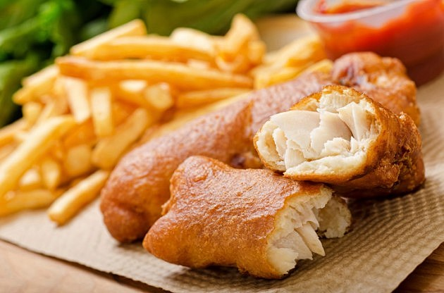 Best Omnivore Fish Food